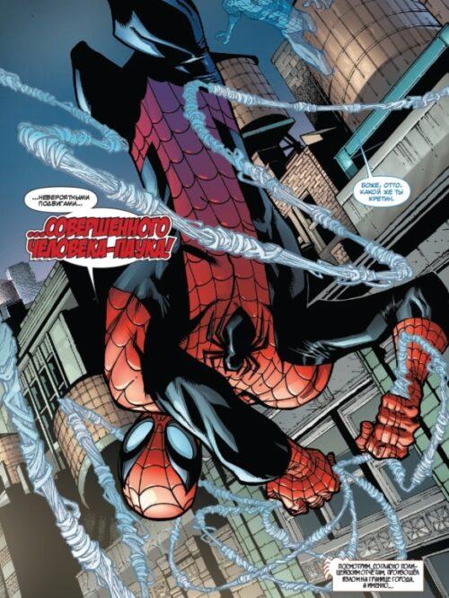 spider 3-3