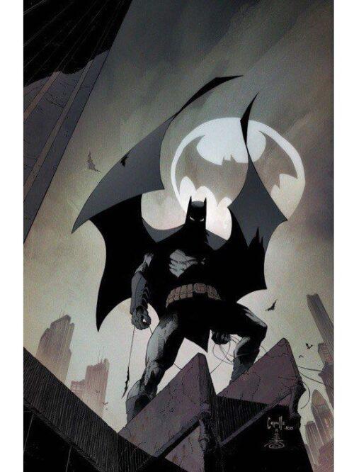 Batman 8-2