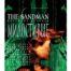 Sandman 9