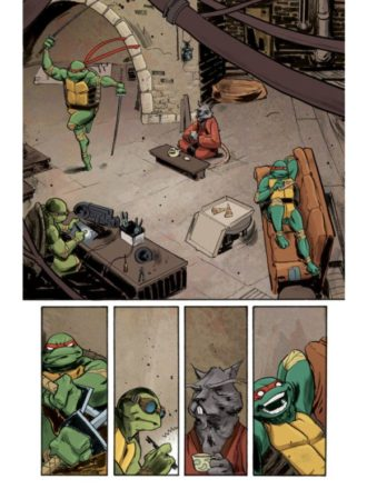 01_turtles_preview_1_mini-510x775