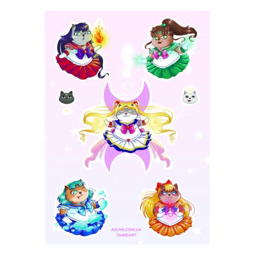 tanie-sailor-cats